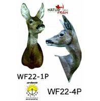 Natur foam bête 3D tête chevreuil 1p ou 4p