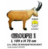 AA cible 3d Bouquetin debout 53G452