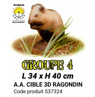 AA cible 3d Ragondin