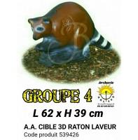AA cible 3d Raton laveur