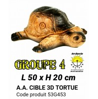AA cible 3d Tortue