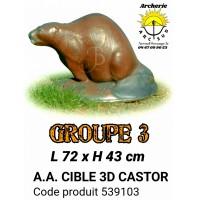AA cible 3d Castor