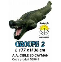 AA cible 3d Cayman