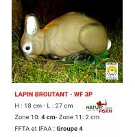 Natur foam bête 3D lapin broutant wf3p