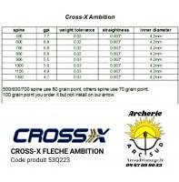 Cross x flèches ambition