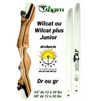 Ragim arc initiation wilcat junior