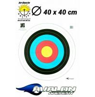 Avalon blason 40 cm