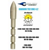 Avalon pointe ogive carbon tec one 4.2 (par 12)