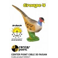 c point cible 3d faisan