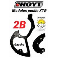 Hoyt modules xtr 2B gauche