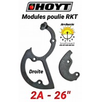 Hoyt modules rkt 2A droite