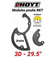 Hoyt modules rkt 3D droite