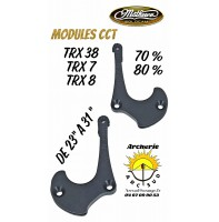 Mathews modules trx cct