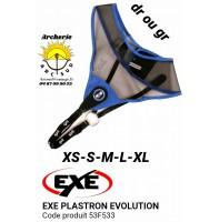 Exe plastron evolution 53f533