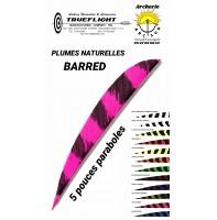 trueflight plumes naturelles parabole barred 5 pouces