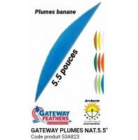 gateway plumes naturelles 5.5 pouces banane 53a823