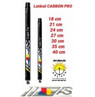 Arc système lateral carbone pro ref c1.636
