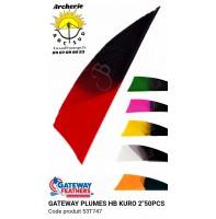 gateway plumes naturelles hb kuro shield 2 pouces 53t747 (pack de 50)