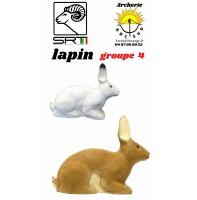Srt bêtes 3D lapin