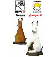 Srt bêtes 3D lièvre