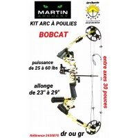 Martin package arc a poulie bobcat ref 2430d70