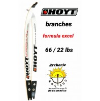 Hoyt branches formula excel 66/22 lbs