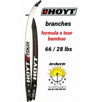 Hoyt branches formula xtour bamboo 66/28 lbs