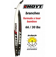 Hoyt branches formula xtour bamboo 66/30 lbs