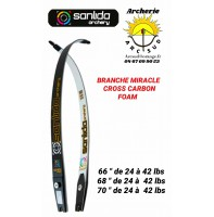 Sanlida branche miracle cross carbon foam