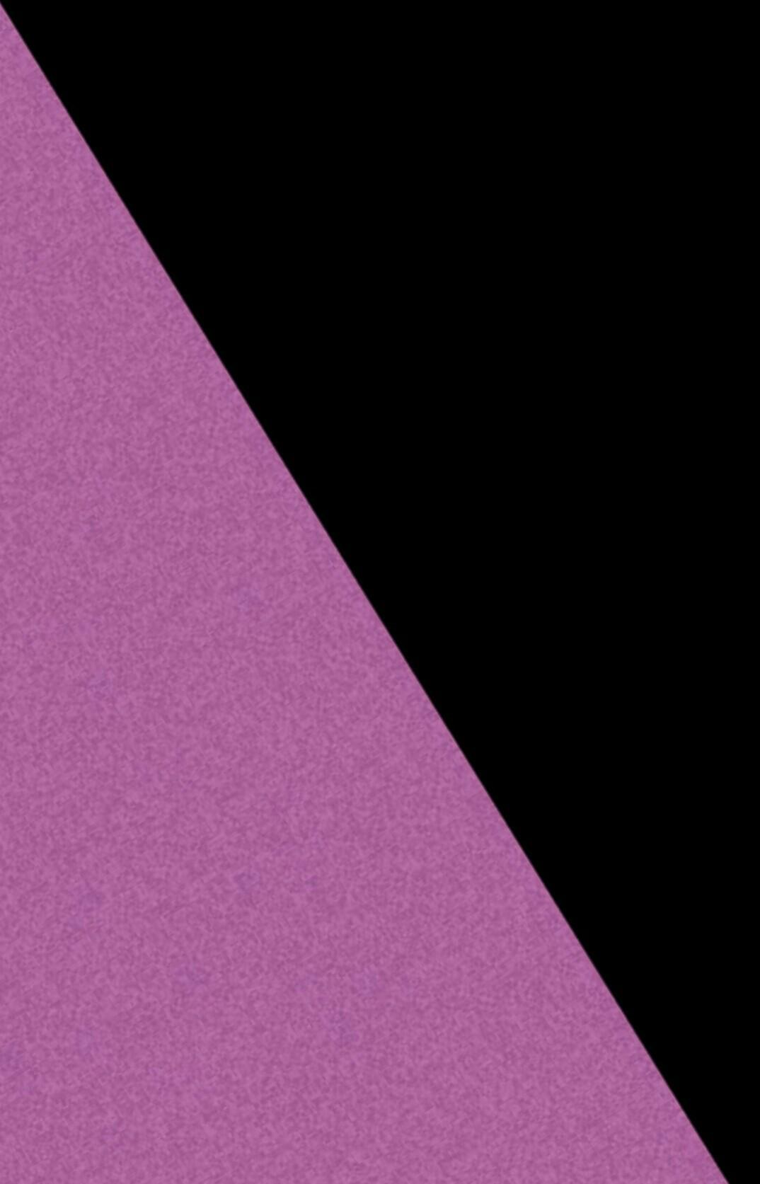 noir violet