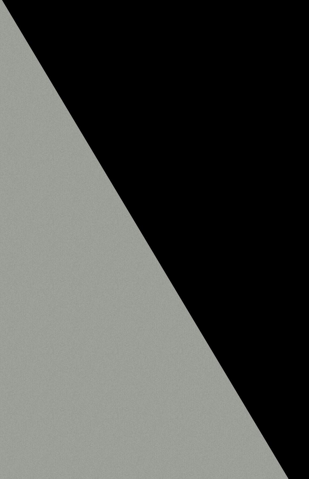 Noir gris